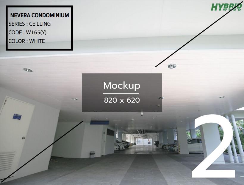 mockup-project-2