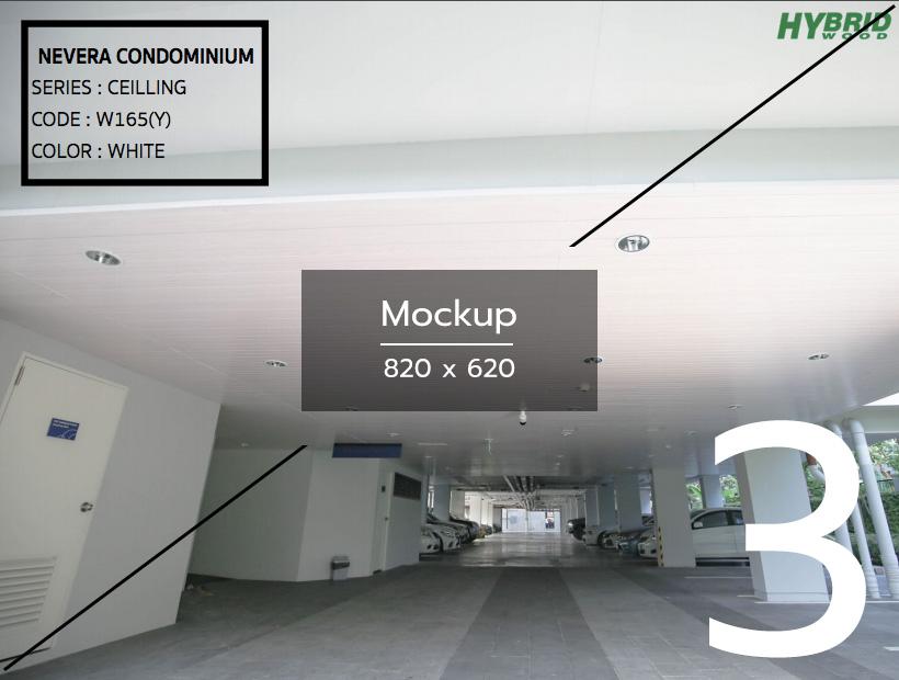 mockup-project-3