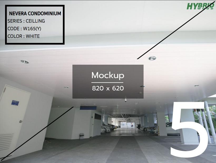 mockup-project-5